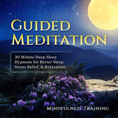 Guided Meditation: 30 Minute Deep Sleep Hypnosis for Better Sleep, Stress Relief, & Relaxation (Self Hypnosis, Affirmations, Guided Imagery & Relaxation Techniques) by Mindfulness Training audiobook