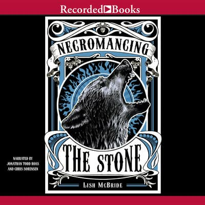 Necromancing the Stone by Lish McBride audiobook