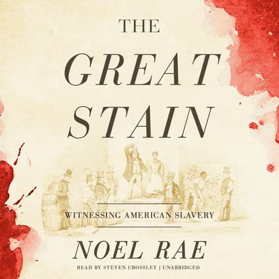 The Great Stain  by Noel Rae audiobook