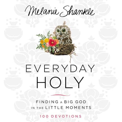 Everyday Holy by Melanie Shankle audiobook