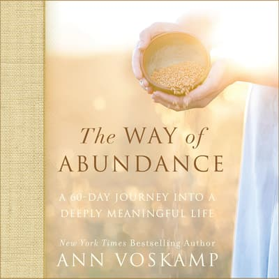 The Way of Abundance by Ann Voskamp audiobook