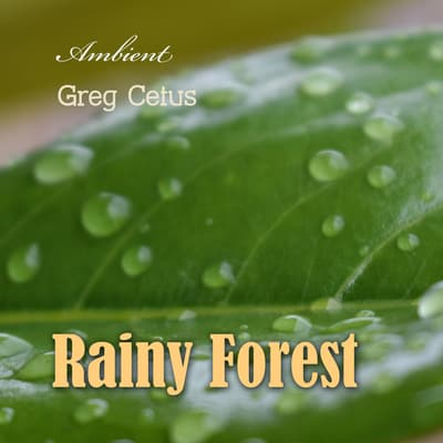 Rainy Forest: Ambient Nature Sounds by Greg Cetus audiobook