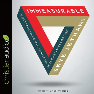 Immeasurable by Skye Jethani audiobook