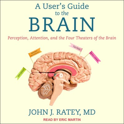 A User's Guide to the Brain by John J. Ratey audiobook