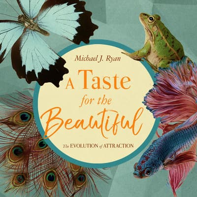 A Taste for the Beautiful by Michael J. Ryan audiobook