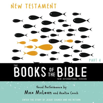 The Books of the Bible Audio Bible - New International Version, NIV: (4) New Testament by Zondervan audiobook