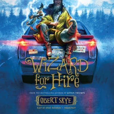 Wizard for Hire by Obert Skye audiobook