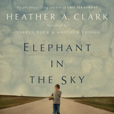 Elephant in the Sky by Heather A. Clark audiobook