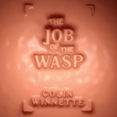 The Job of the Wasp by Colin Winnette audiobook