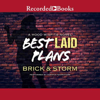 Best Laid Plans by Brick  audiobook