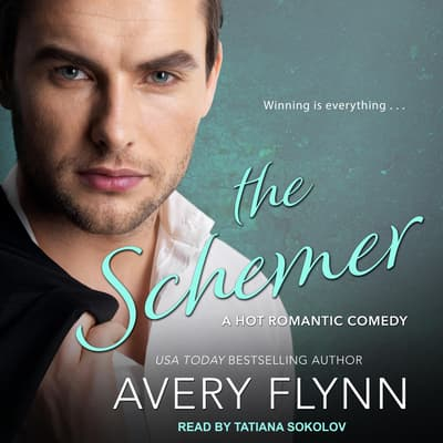 The Schemer by Avery Flynn audiobook