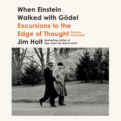 When Einstein Walked with Gödel by Jim Holt audiobook