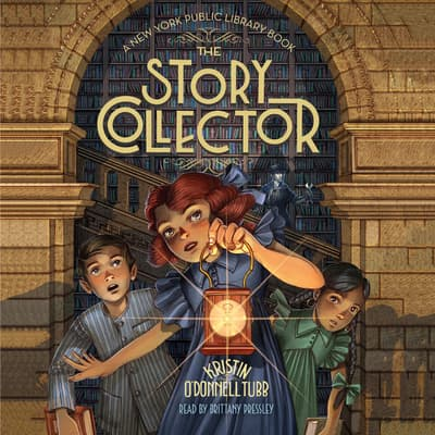 The Story Collector by Kristin O'Donnell Tubb audiobook