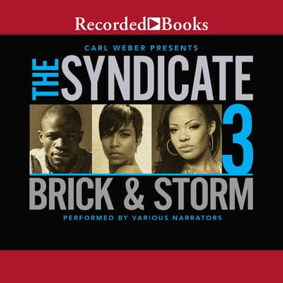 The Syndicate 3 by Brick  audiobook