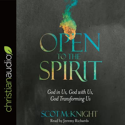 Open to the Spirit by Scot McKnight audiobook