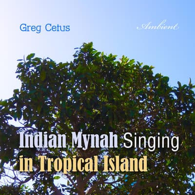 Indian Mynah Singing in Tropical Island by Greg Cetus audiobook