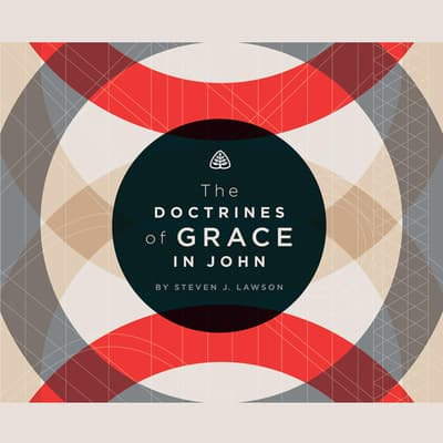 The Doctrines of Grace in John by Steven J.  Lawson audiobook