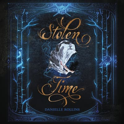 Stolen Time by Danielle Rollins audiobook