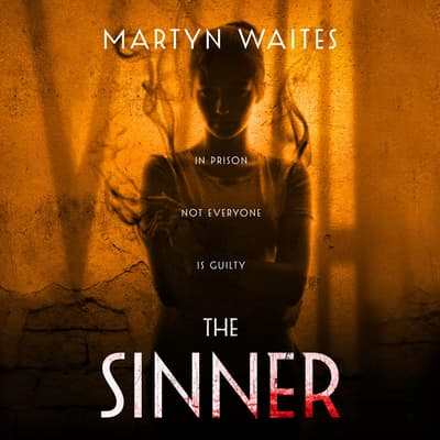 The Sinner by Martyn Waites audiobook