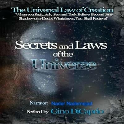 The Universal Law of Creation, Chronicles by Gino DiCaprio audiobook