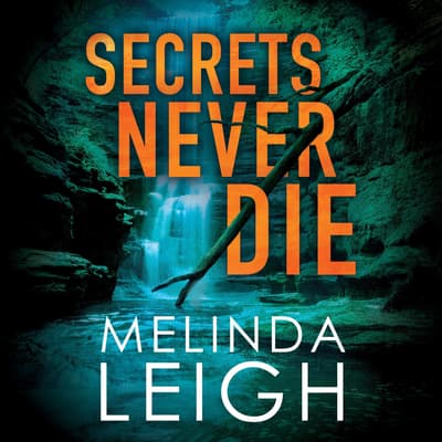 Secrets Never Die by Melinda Leigh audiobook