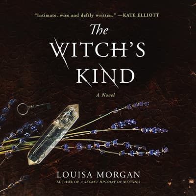 The Witch's Kind by Louisa Morgan audiobook