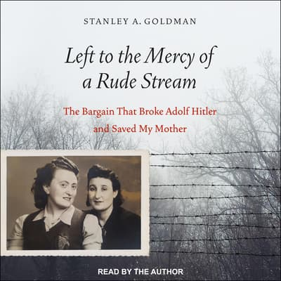 Left to the Mercy of a Rude Stream by Stan Goldman audiobook