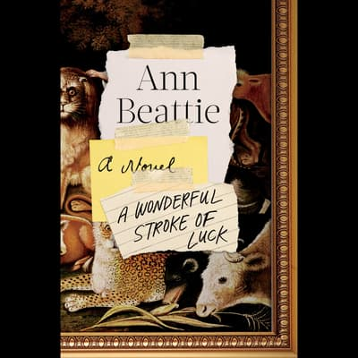 A Wonderful Stroke of Luck by Ann Beattie audiobook