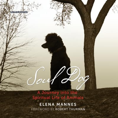 Soul Dog by Elena Mannes audiobook
