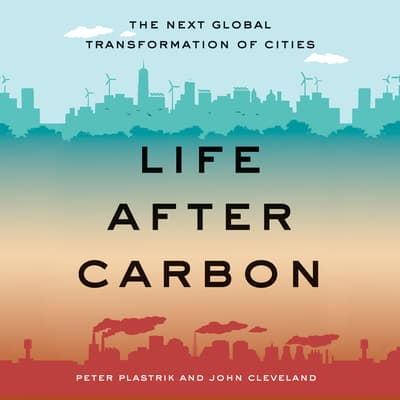 Life after Carbon by Peter Plastrik audiobook