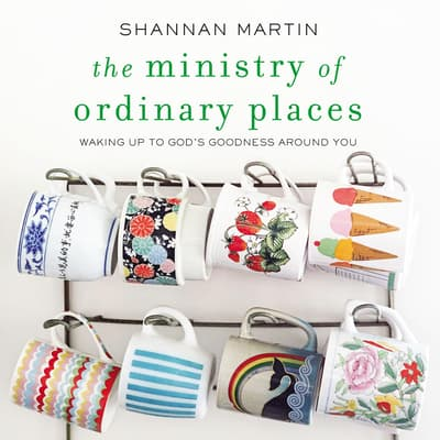 The Ministry of Ordinary Places by Shannan Martin audiobook