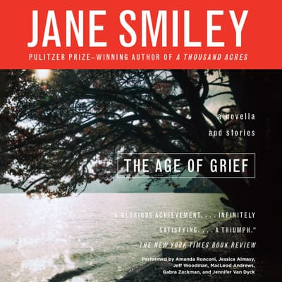 The Age of Grief by Jane Smiley audiobook
