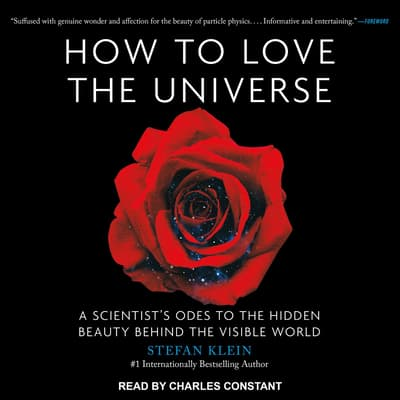 How to Love the Universe by Stefan Klein audiobook