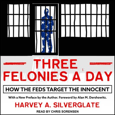 Three Felonies A Day by Harvey Silverglate audiobook