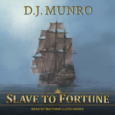 Slave to Fortune by D.J. Munro audiobook