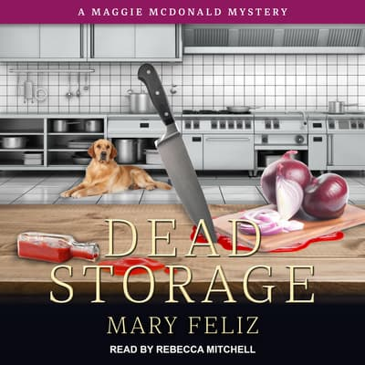 Dead Storage by Mary Feliz audiobook