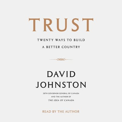 Trust by David Johnston audiobook
