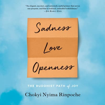 Sadness, Love, Openness by Chokyi Nyima Rinpoche audiobook