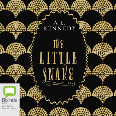 The Little Snake by A. L. Kennedy audiobook