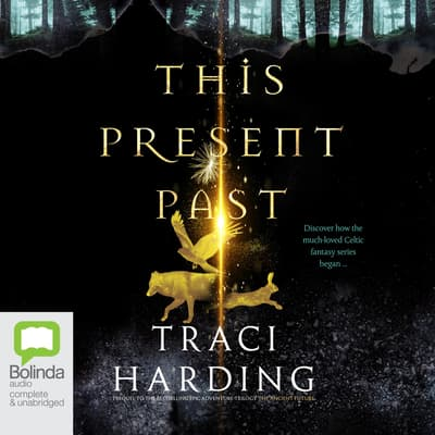 This Present Past by Traci Harding audiobook