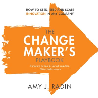 The Change Maker's Playbook by Amy J. Radin audiobook