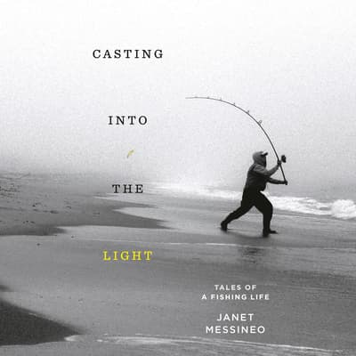 Casting into the Light by Janet Messineo audiobook
