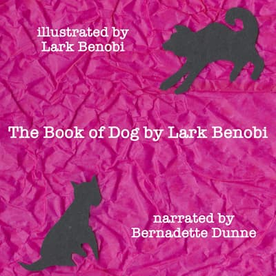 The Book of Dog by Lark Benobi audiobook