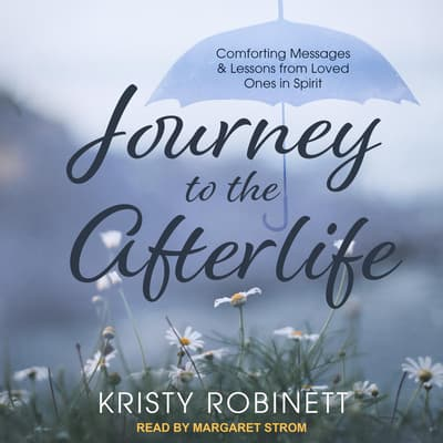 Journey to the Afterlife by Kristy Robinett audiobook