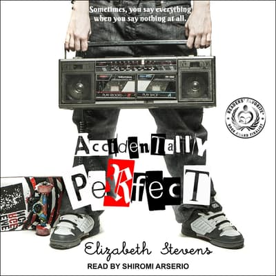 Accidentally Perfect by Elizabeth Stevens audiobook