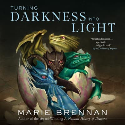 Turning Darkness Into Light by Marie Brennan audiobook