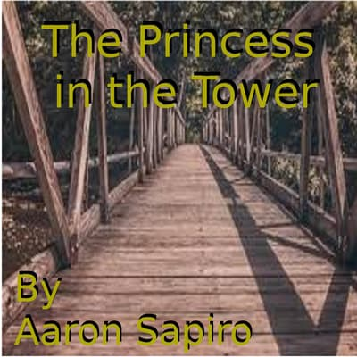 The Princess in the Tower by Aaron Sapiro audiobook
