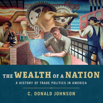 The Wealth of a Nation by C. Donald Johnson audiobook