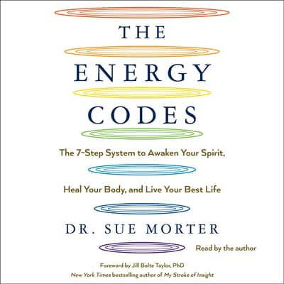 The Energy Codes by Sue Morter audiobook