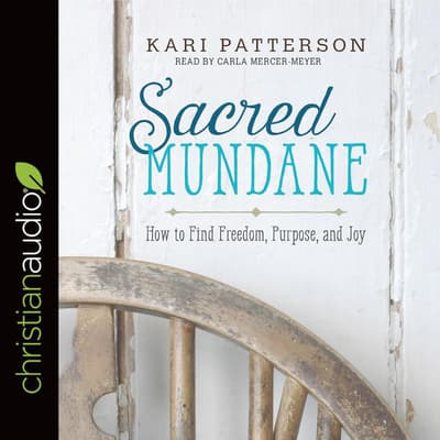 Sacred Mundane by Kari Patterson audiobook